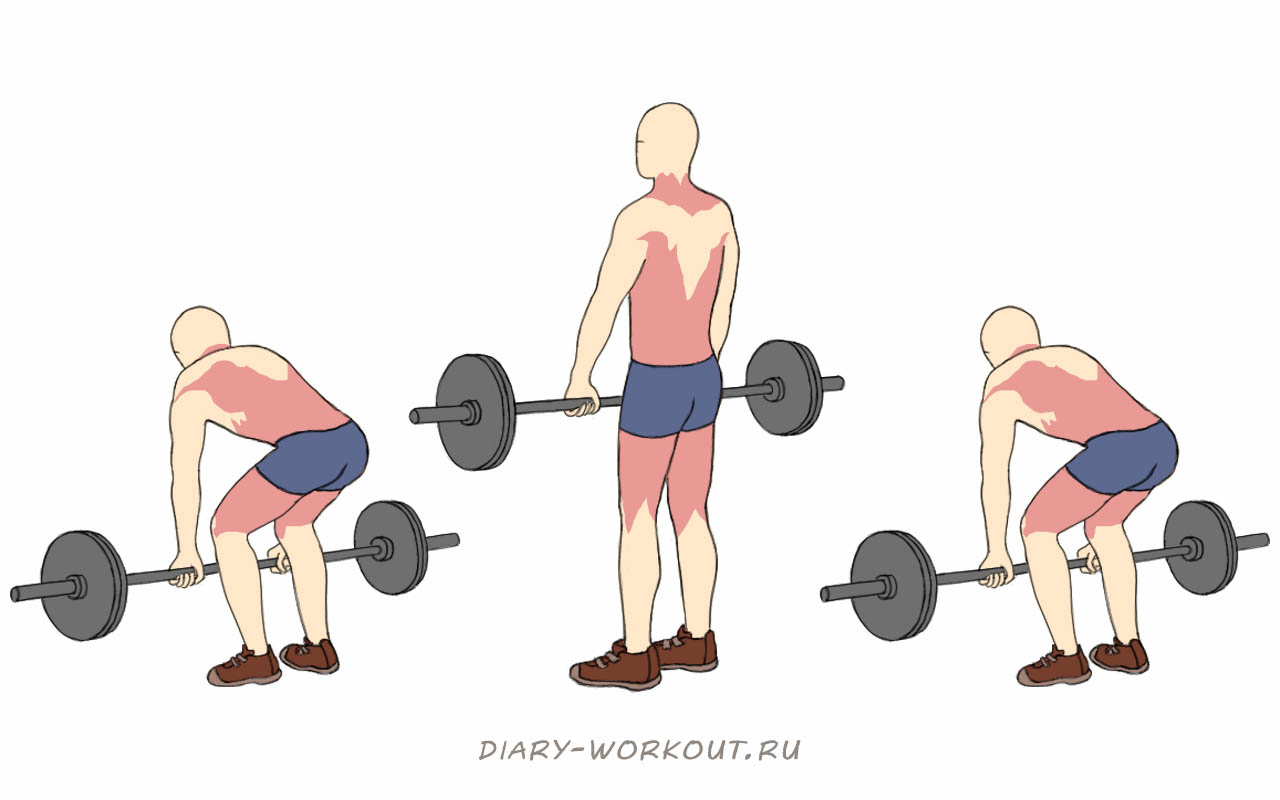 Становая тяга со штангой