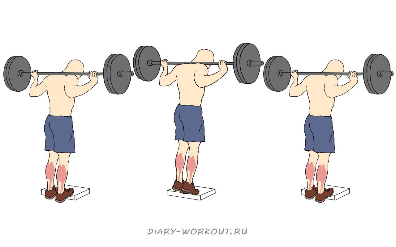 Базовые упражнения одинаково подходят как для опытных атлетов, так и для начинающих.