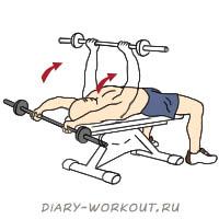 Упражнение пуловер: какие мышцы работают и техника выполнения
