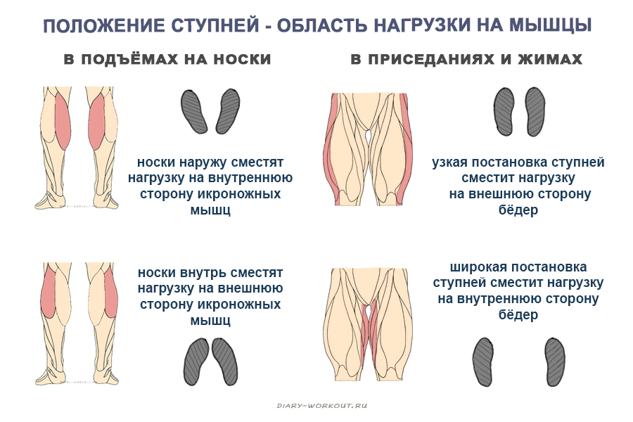 Положение ступней - область нагрузки на мышцы