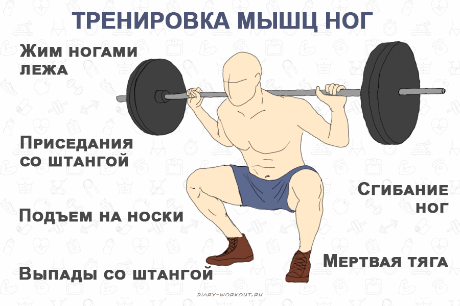 Тренировка ног