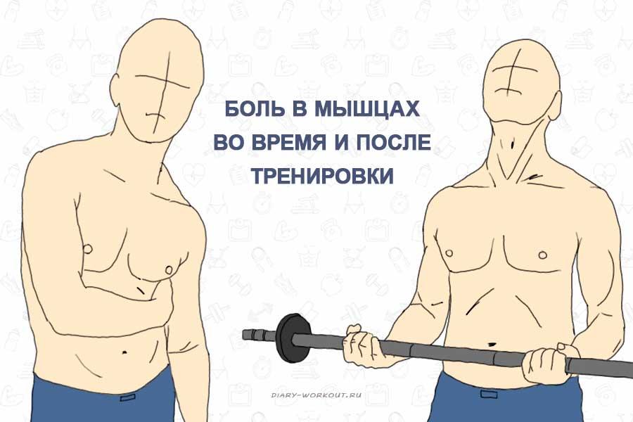 Боль в мышцах во время и после тренировки