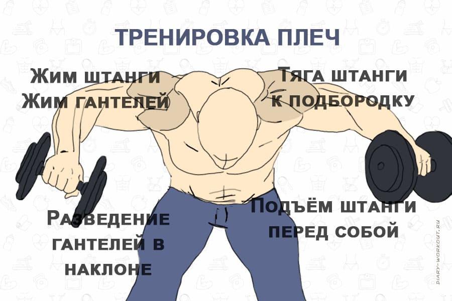 Как накачать широкие плечи? - Тренировки - Фитнес - MEN's LIFE | 600x900
